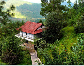 Ayurveda Therapeutic Destination
